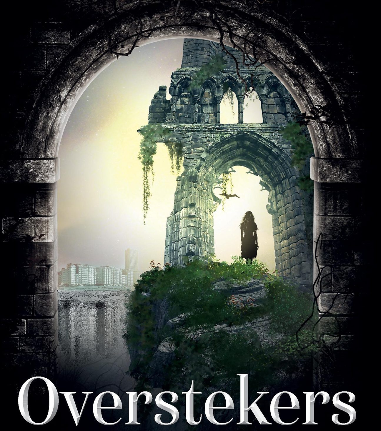 Cover 'Overstekers'