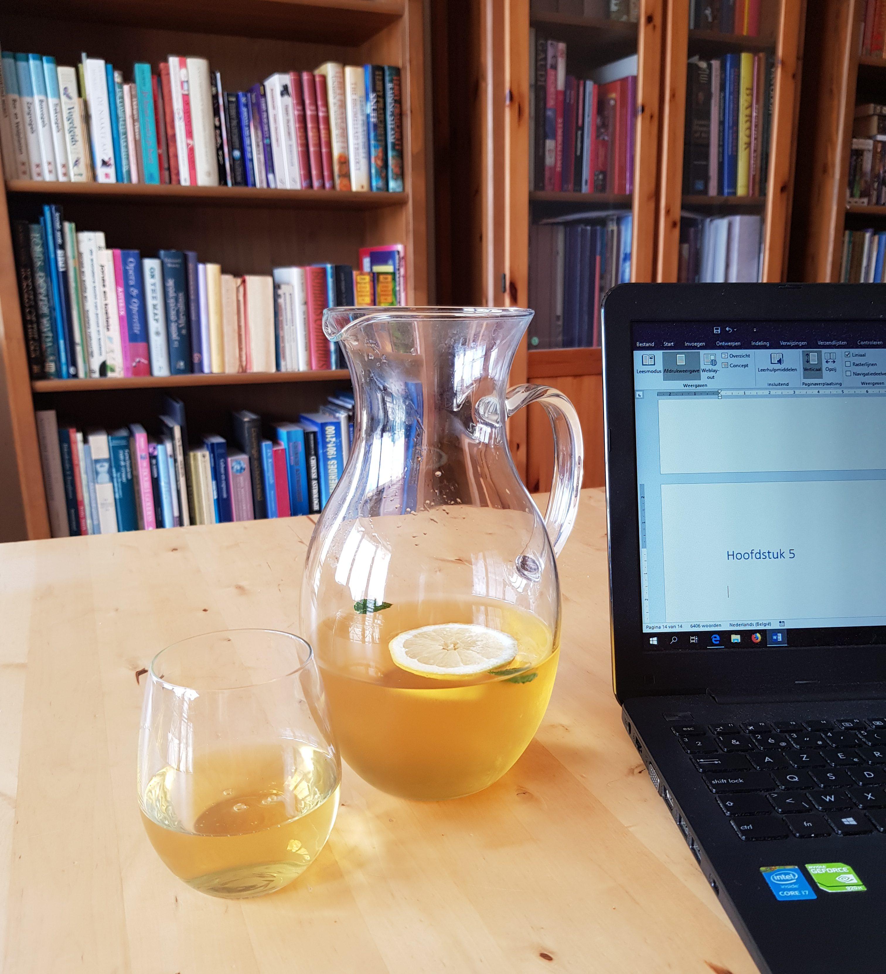 Juni 2019: schrijven, lezen en de rest